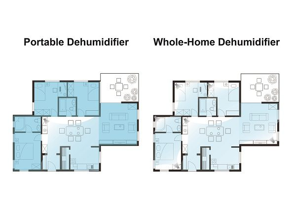 whole house dehumidifier vs portable dehumidifer